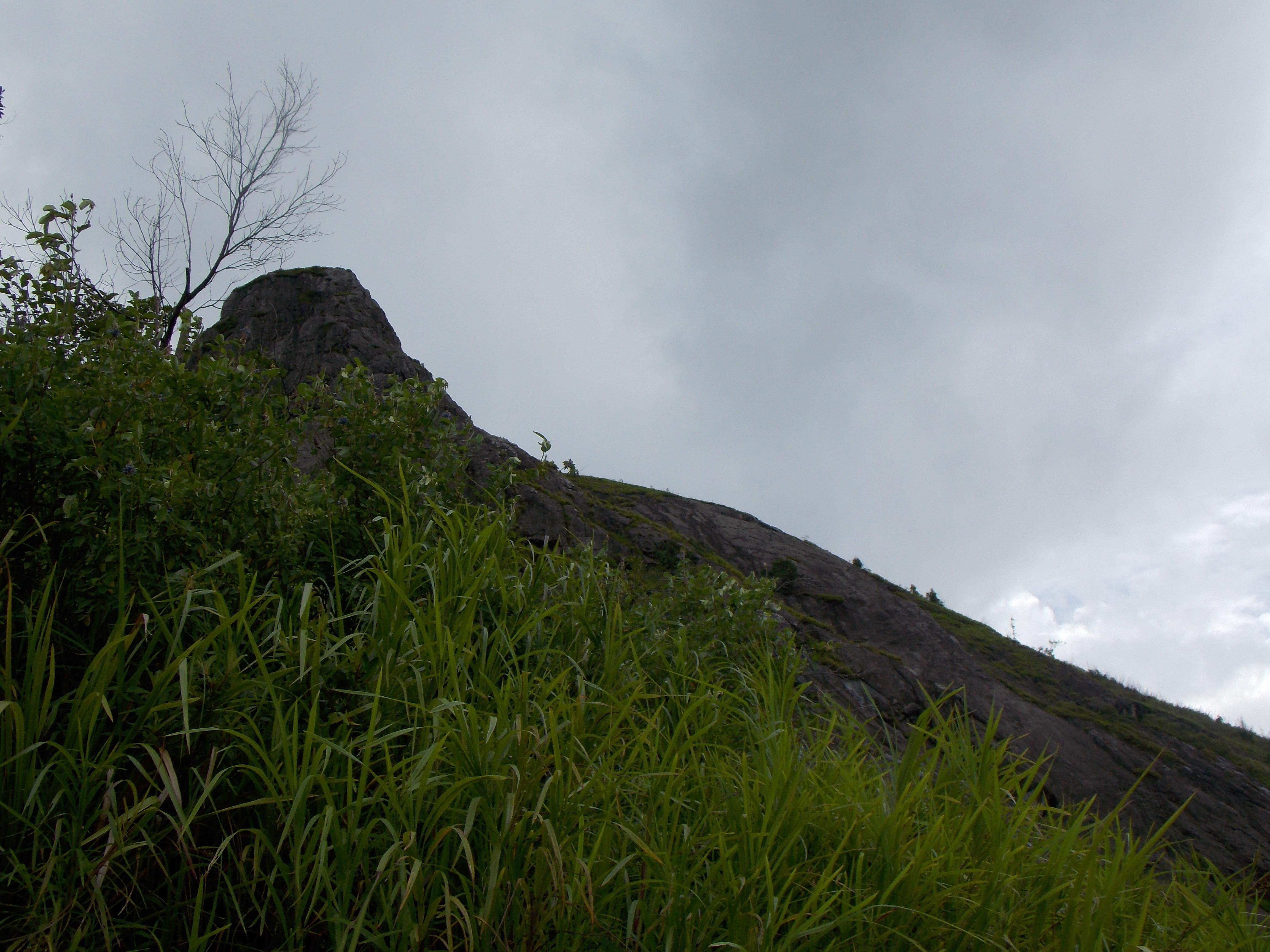 bukit jempol 079