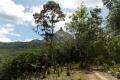 bukit-jempol-042