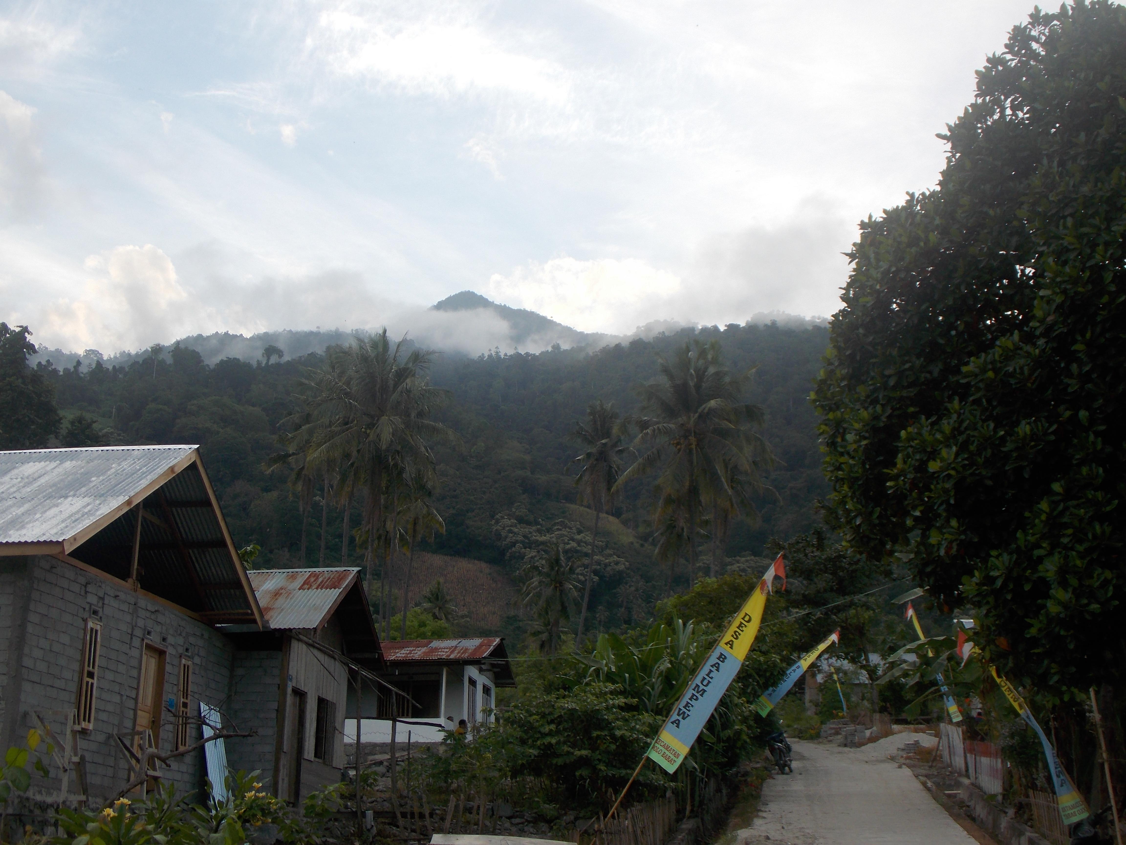 DSCN7034