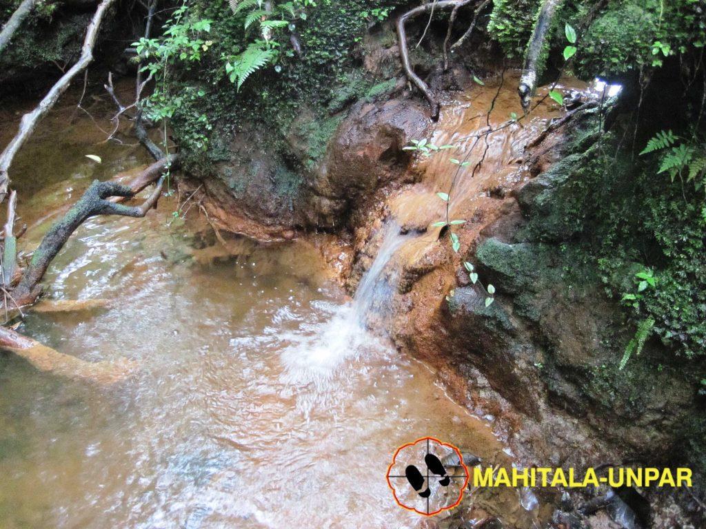 water-springs-in-savanna