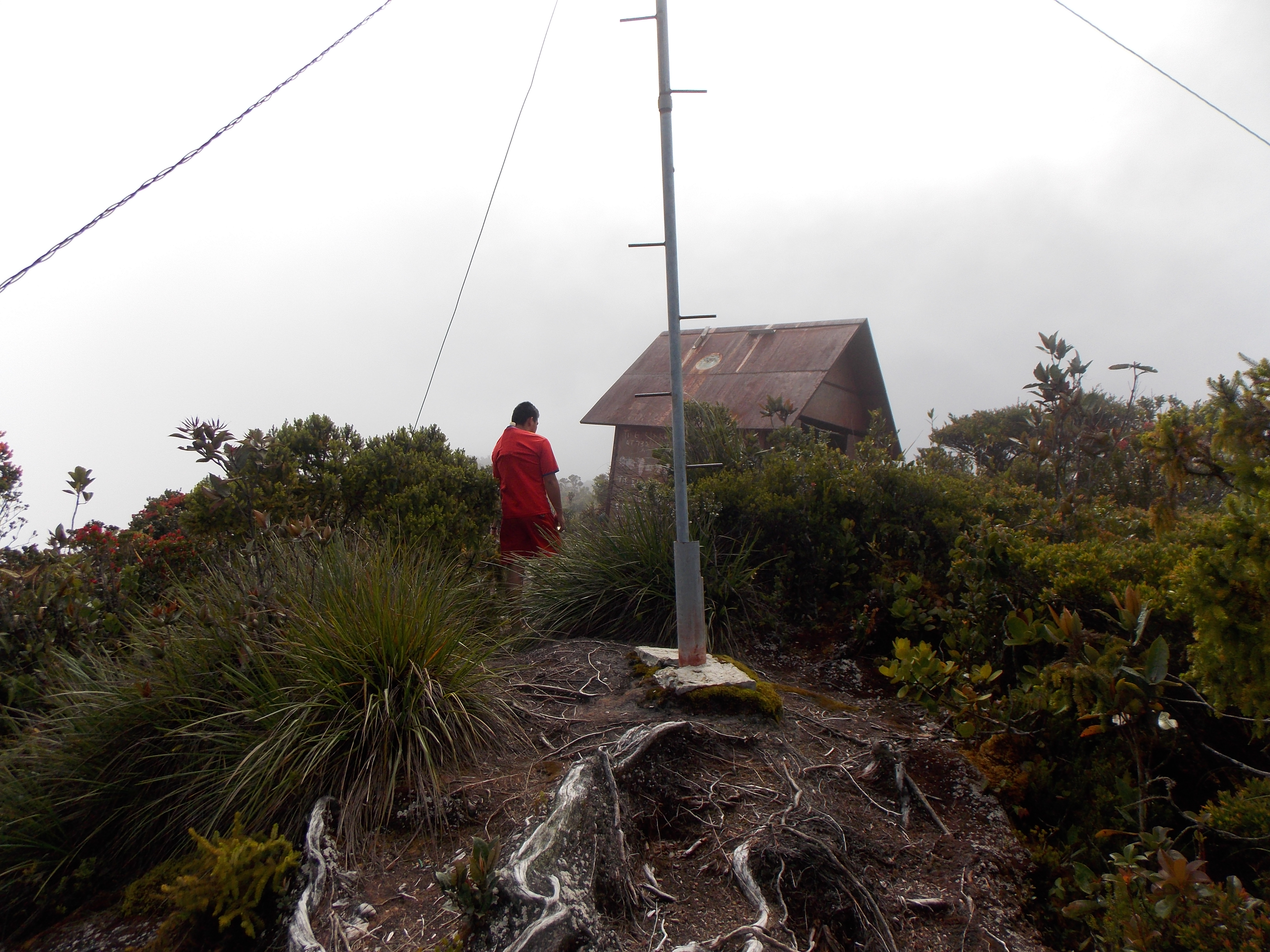 110 Mulu summit mast and building