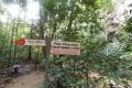 020-trail-junction-at-paku-waterfall