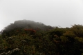 117 Mulu summit ridge