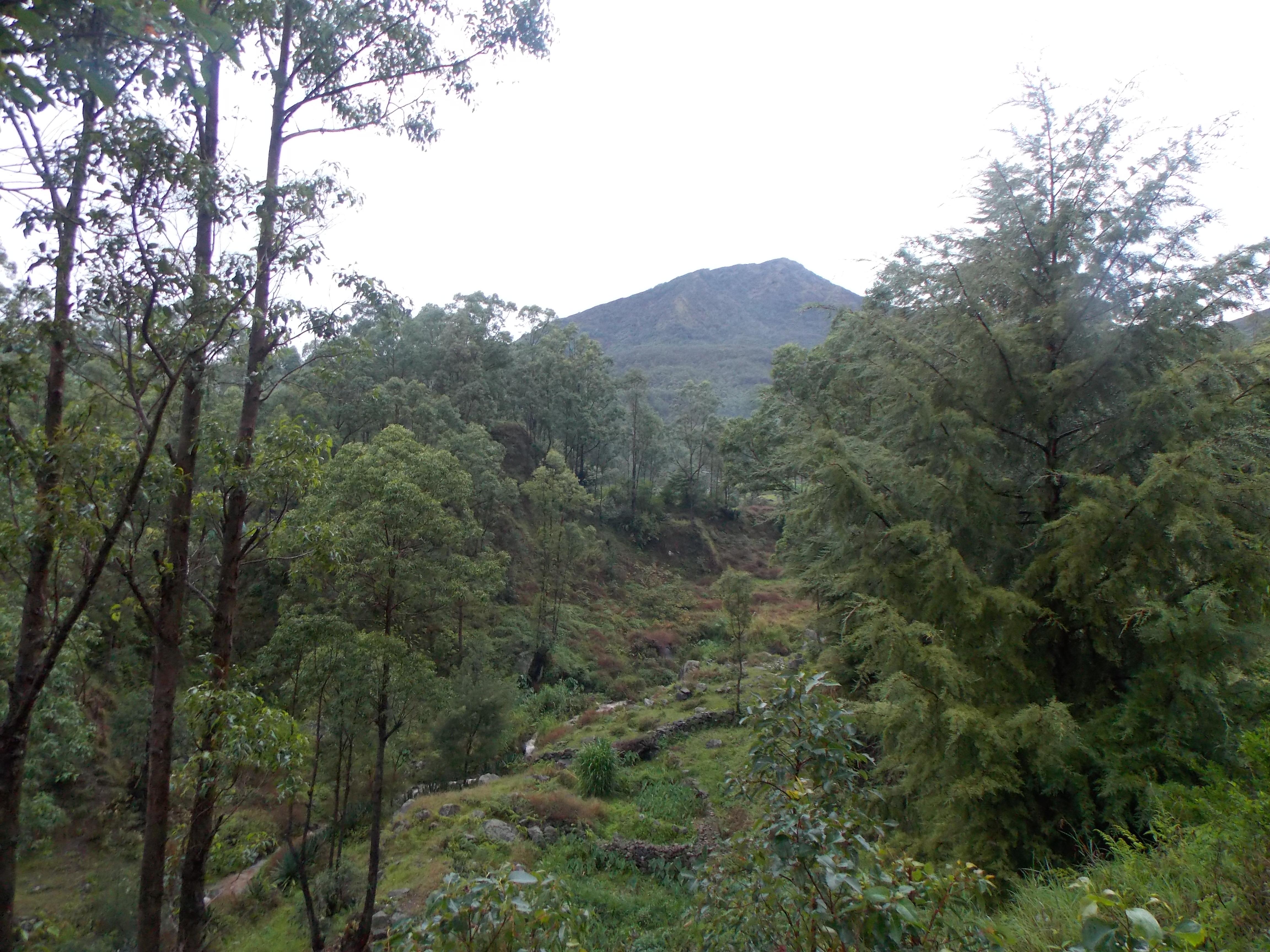 east-timor-383