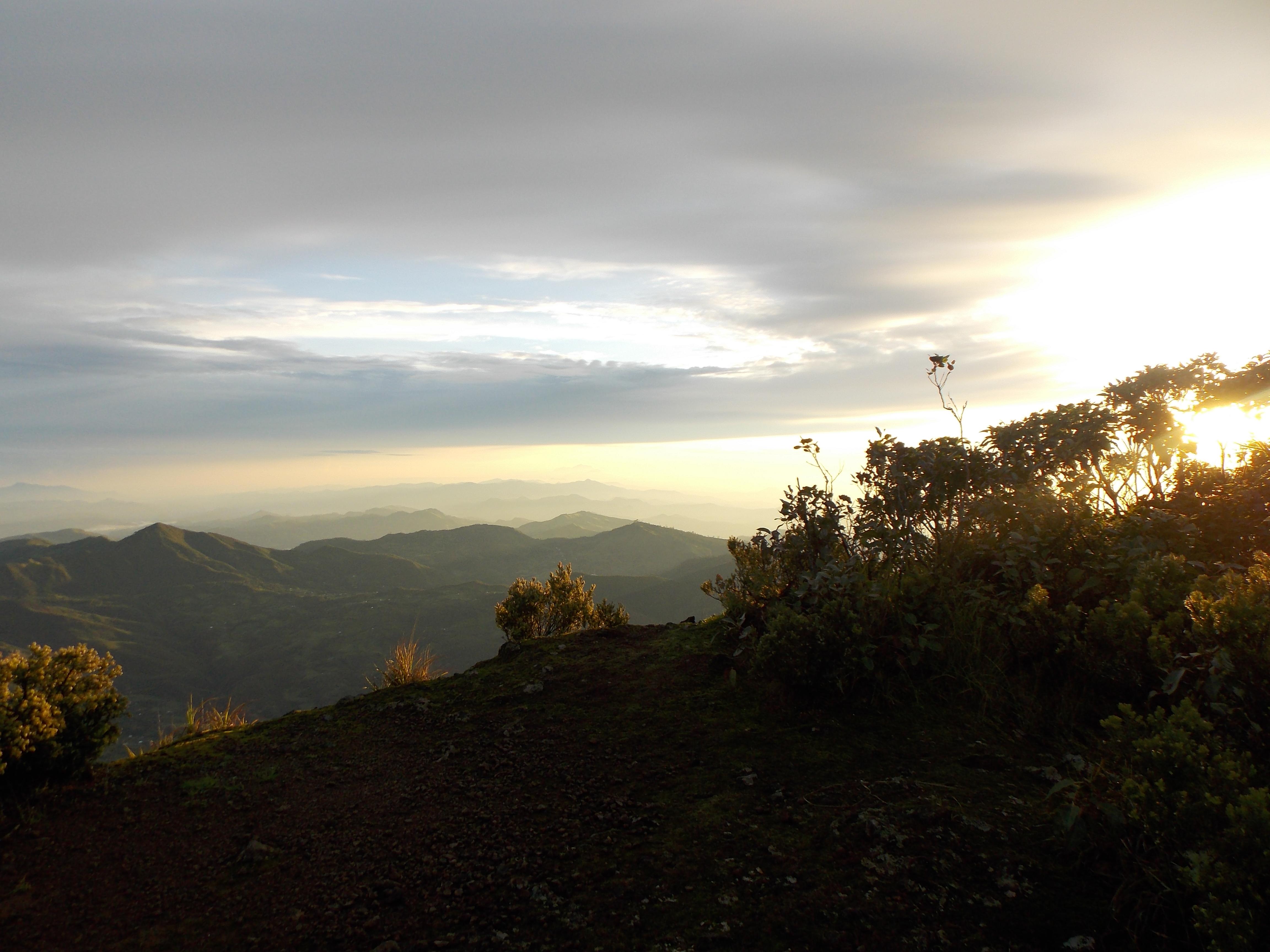east timor 626