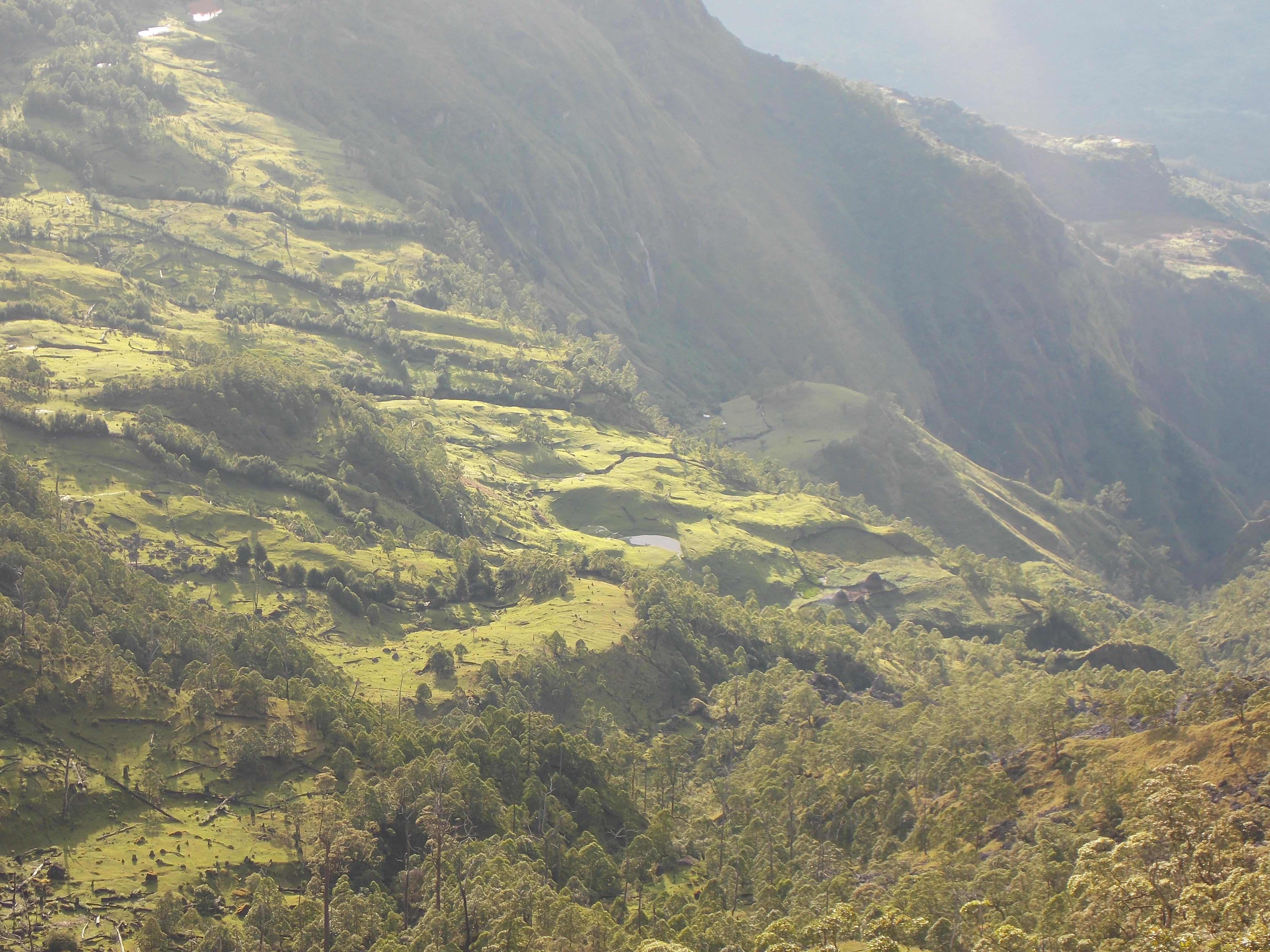 east timor 721