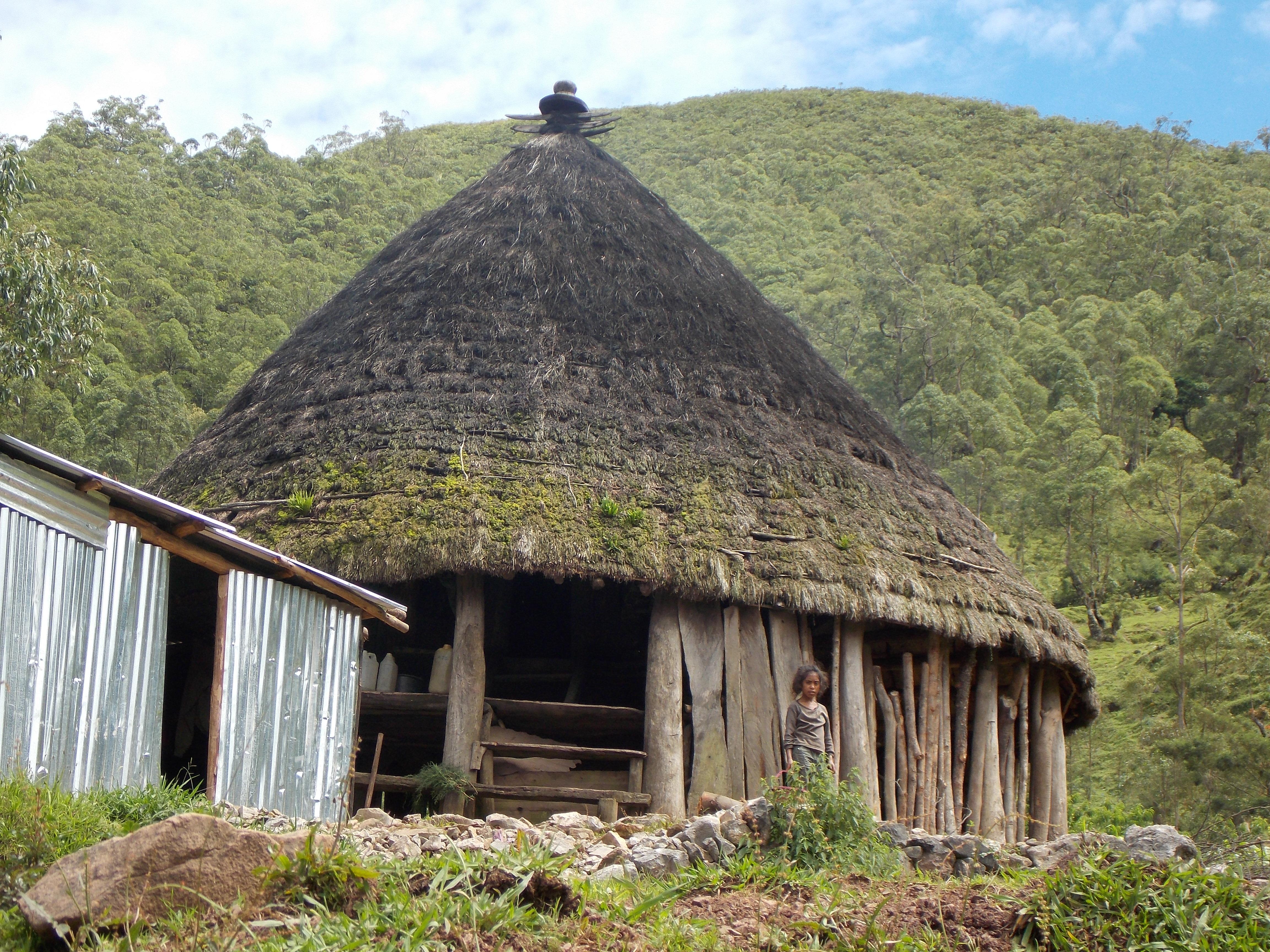 east timor 805