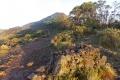east timor 613