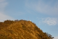east timor 629