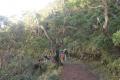 east timor 673