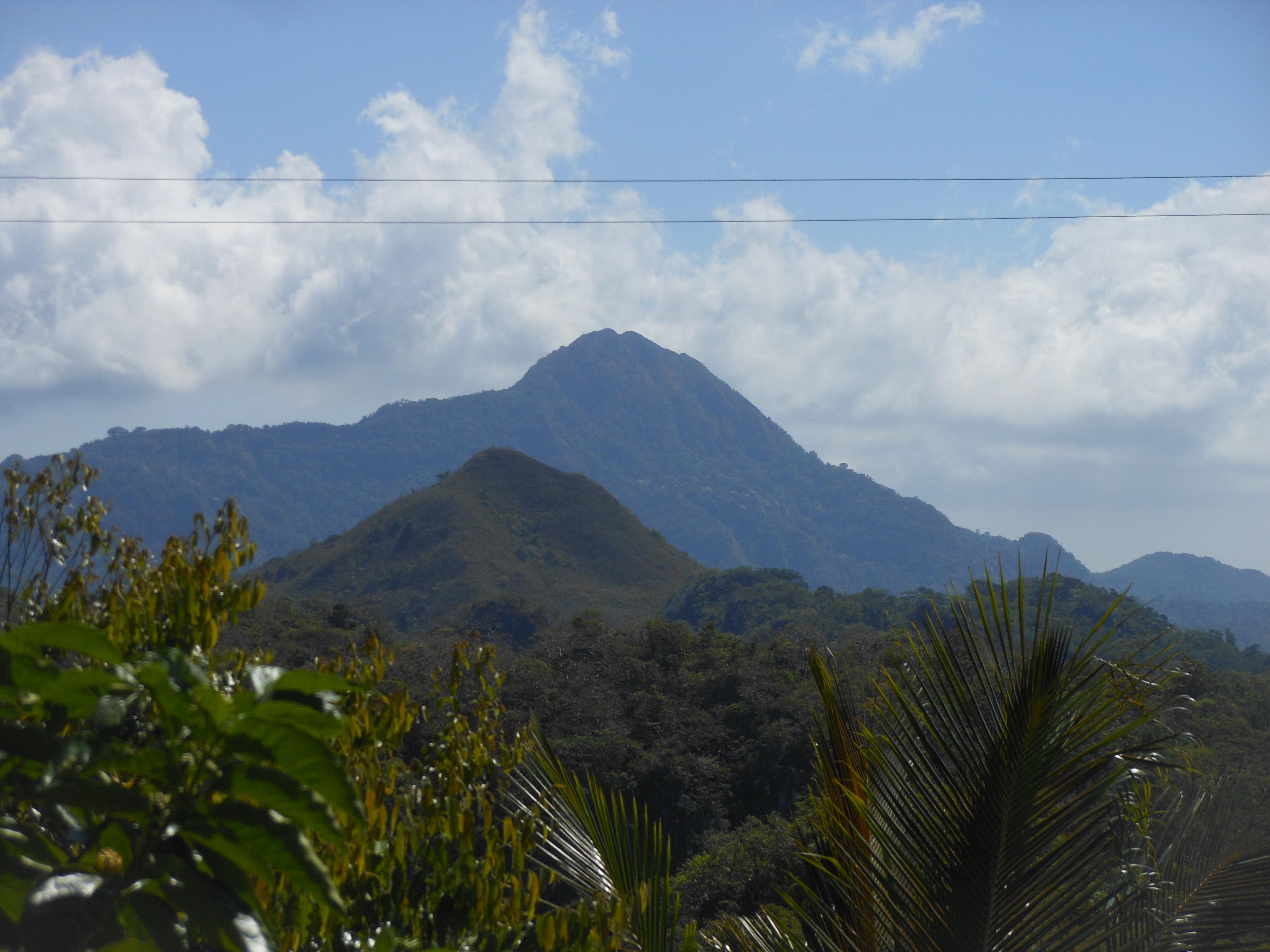 tondongkarambu-099