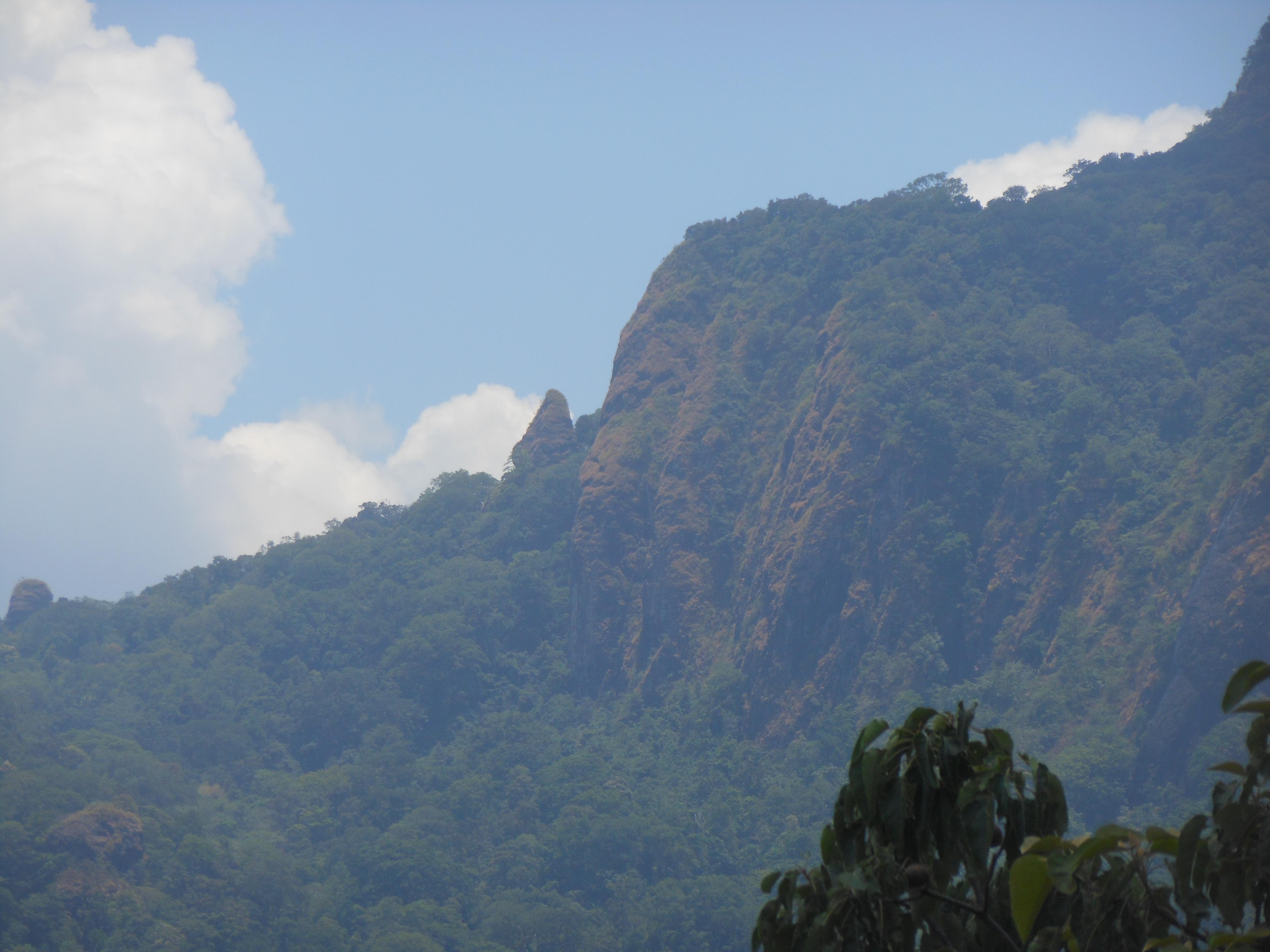 tondongkarambu 336
