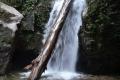 17 A nice small waterfall along the trail to gunung Korbu