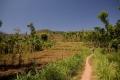 argopuro_argapuro-farming