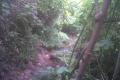the-trek-of-manglayang1