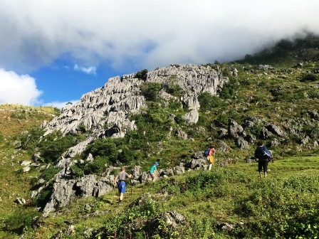 Fluted karst limstone outcrop on ascent of Matebean (Nicholas Hughes, July 2018) (1)