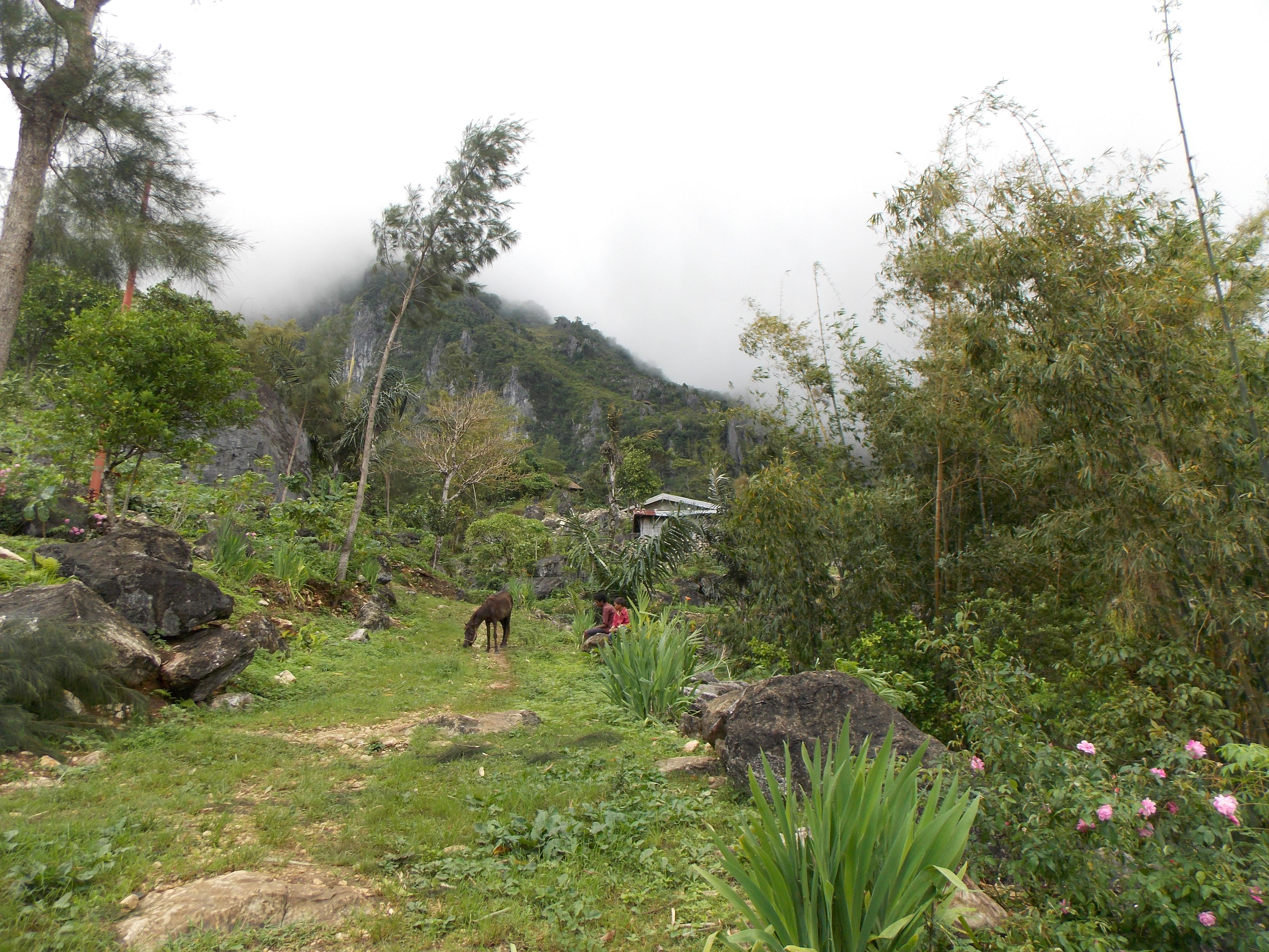 east-timor-118