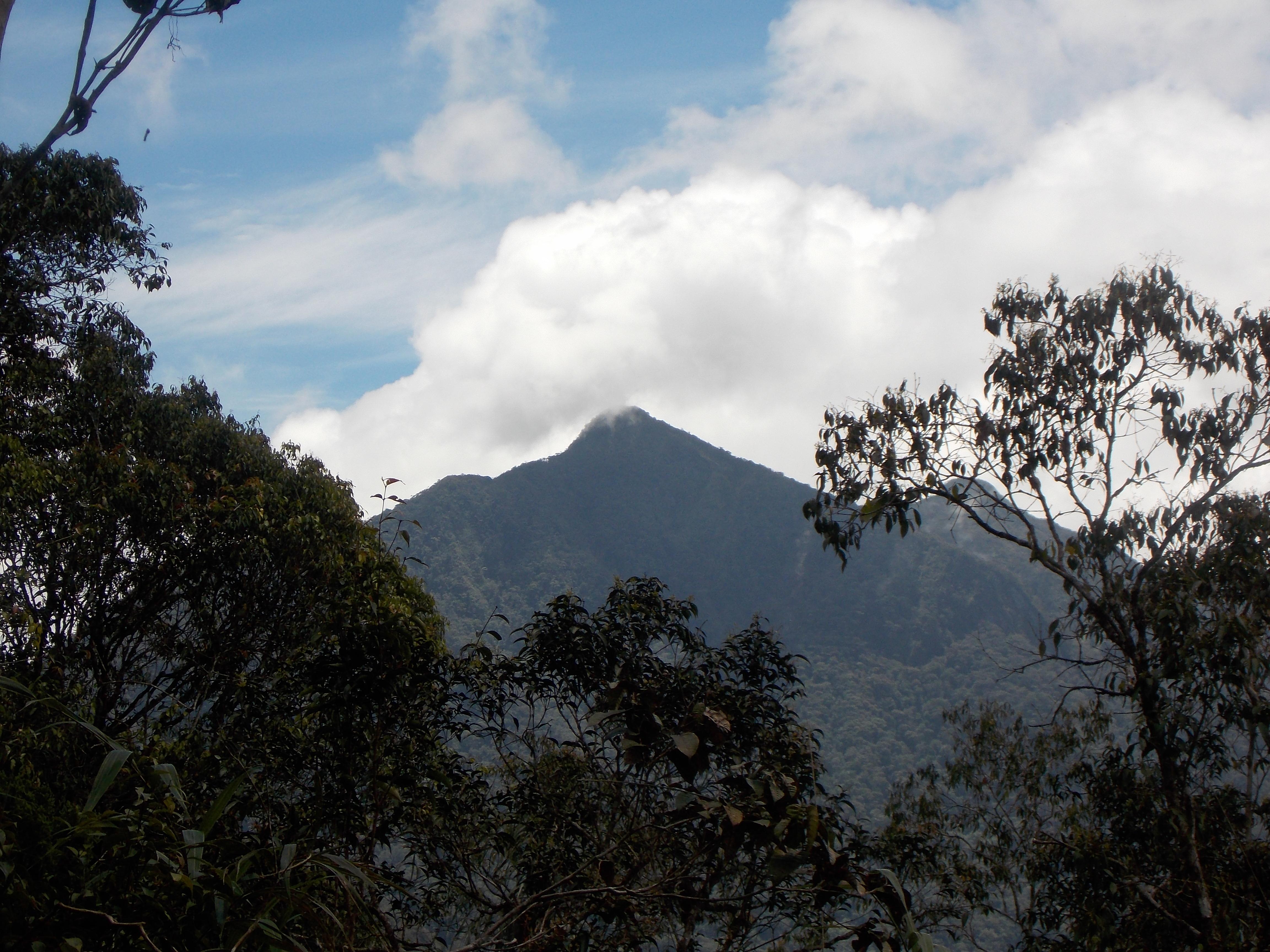 071 A closer look at Mulu summit