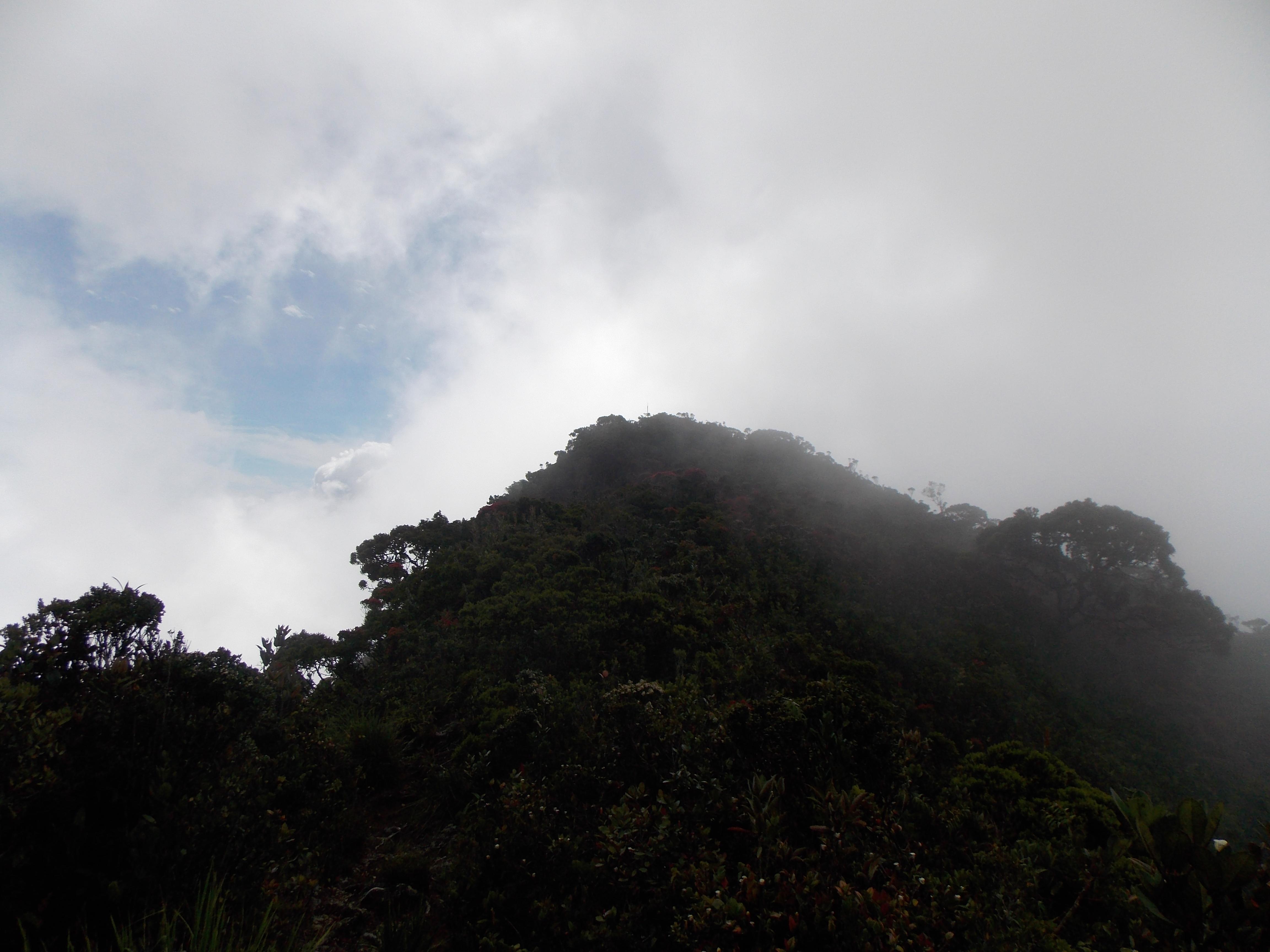 107 Looking towards Mulu summit ridge