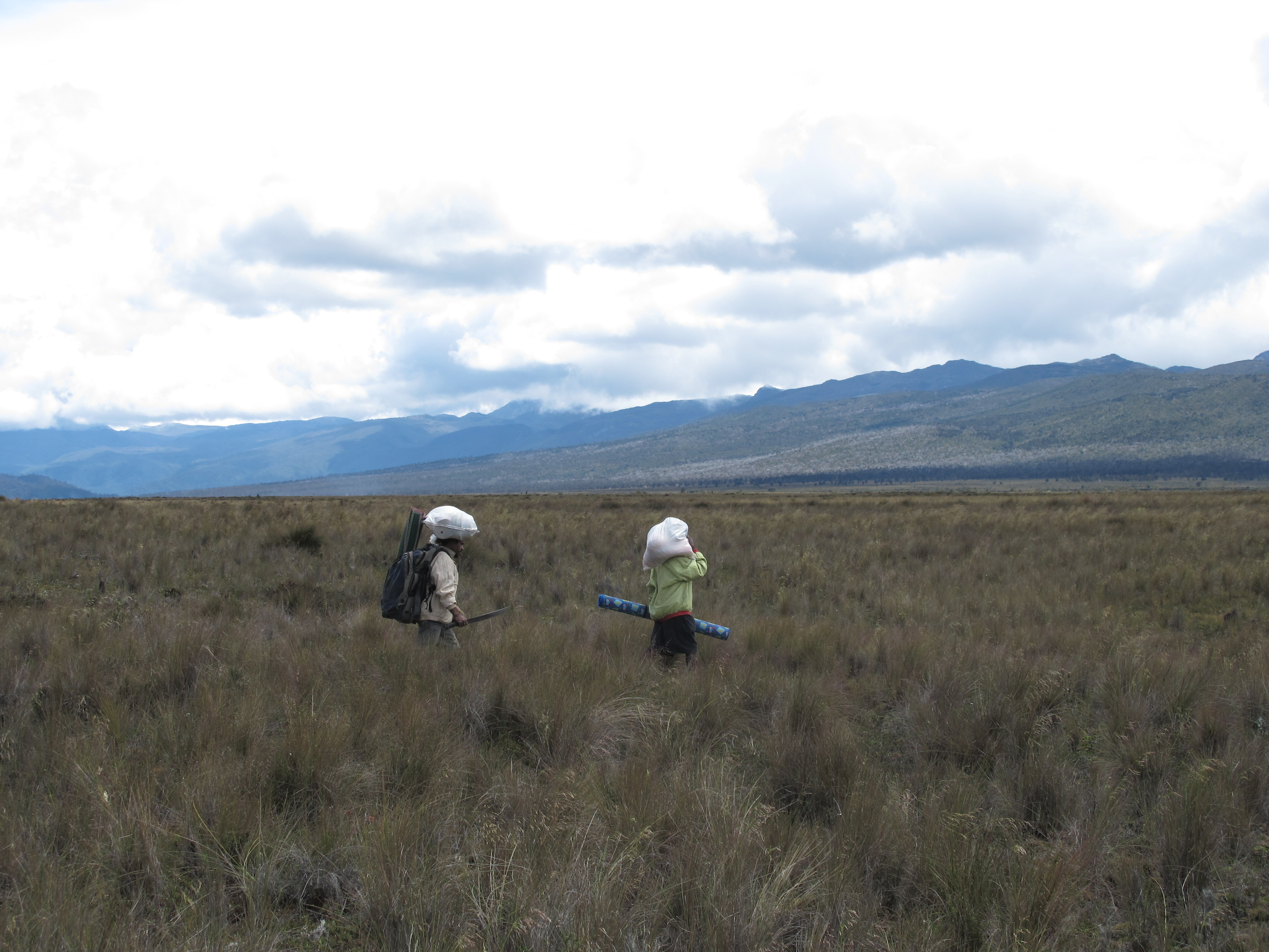 28-nov-2010-porters-crossing-floodplain