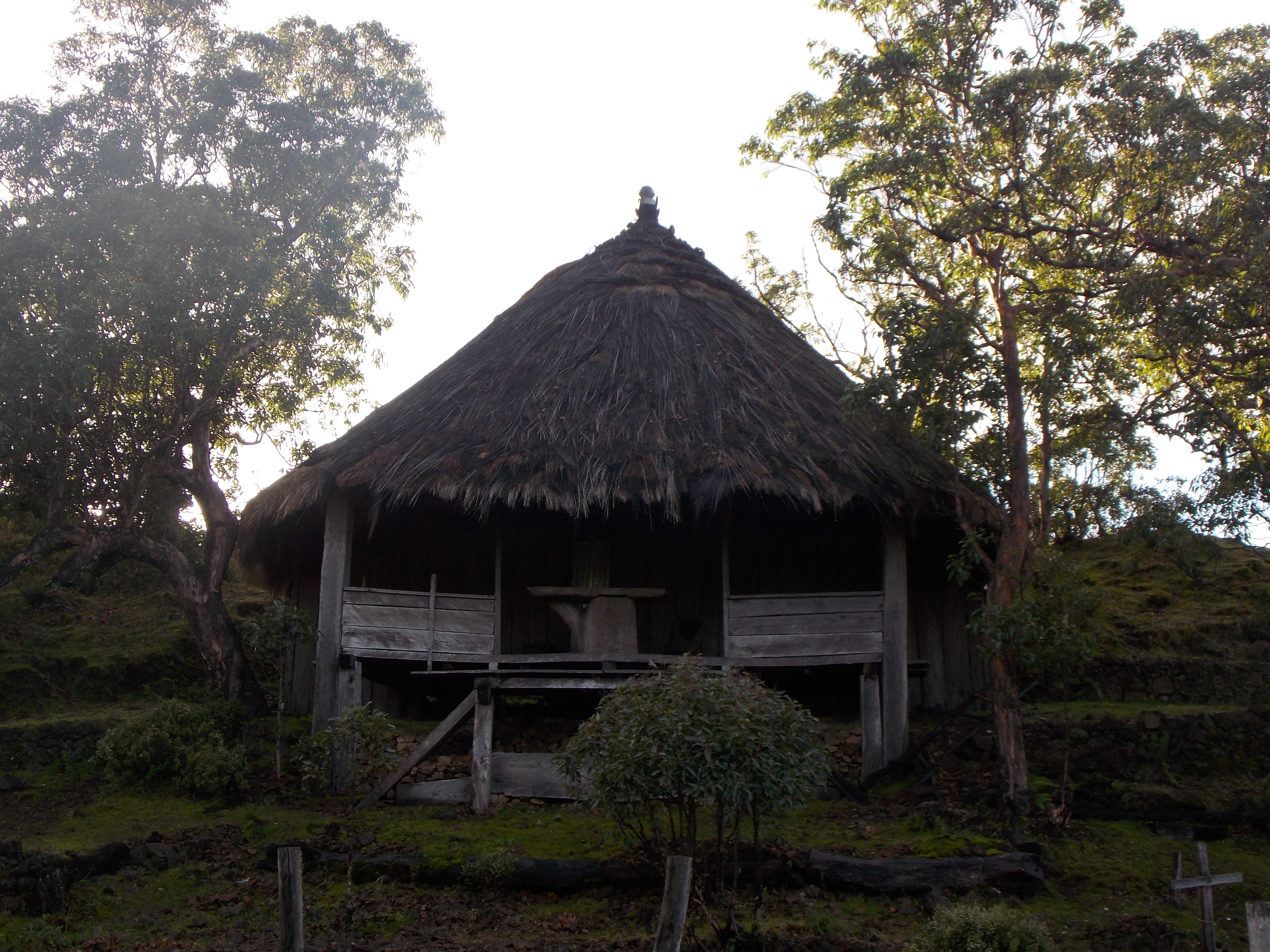 east timor 688