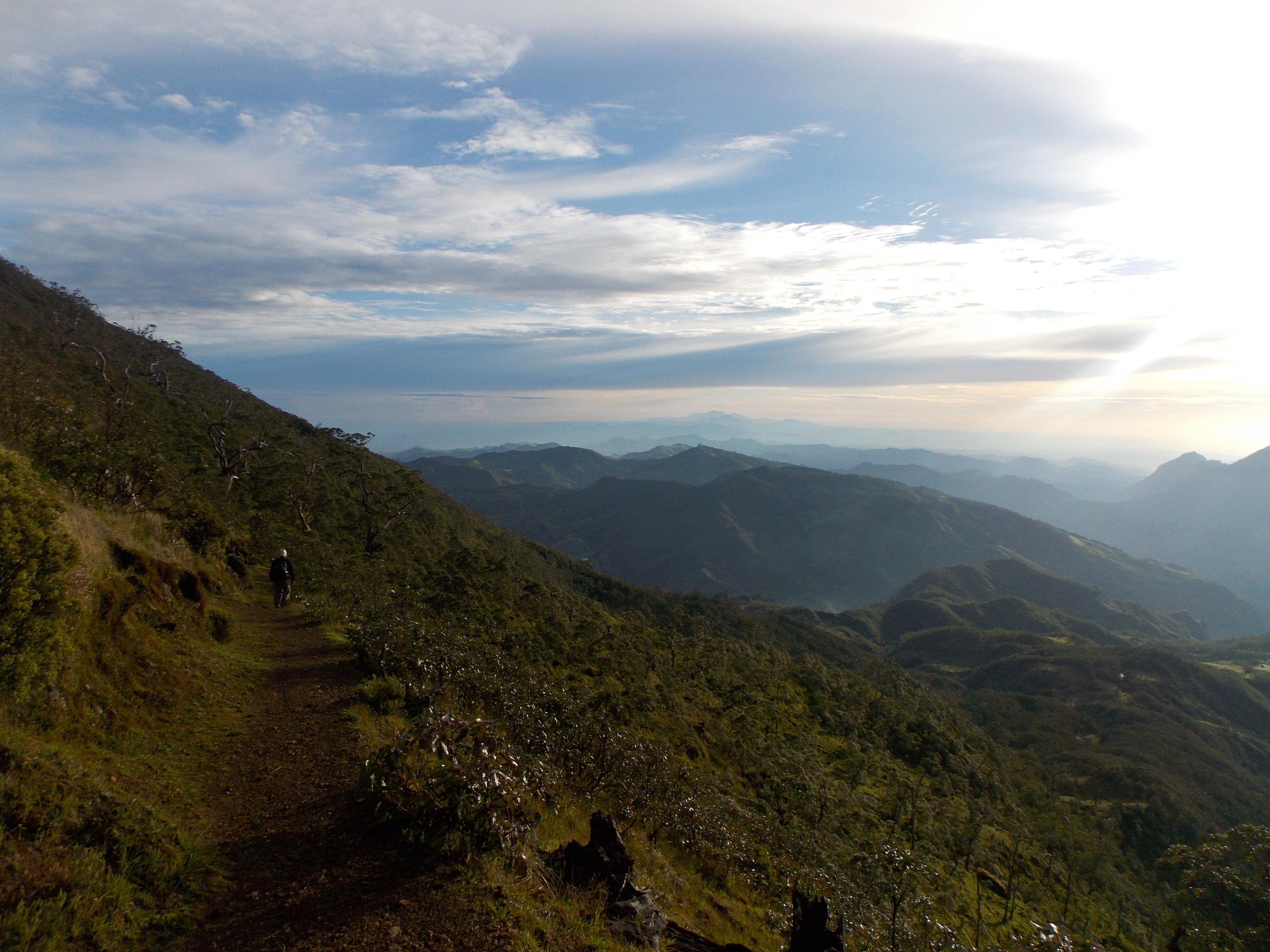 east timor 726