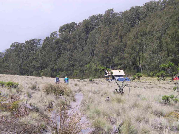 semeru_kalimati-base-camp1