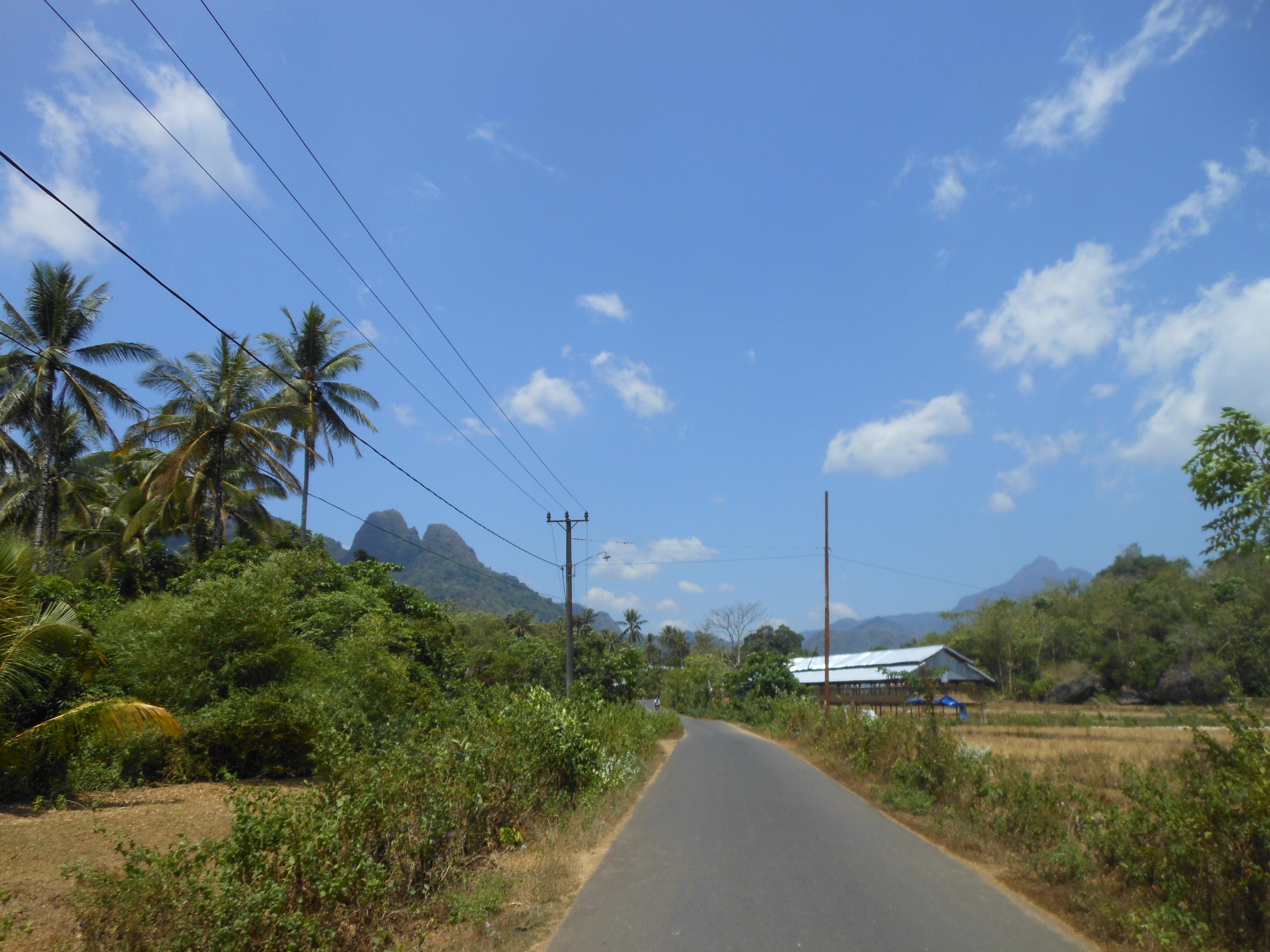 tondongkarambu-080