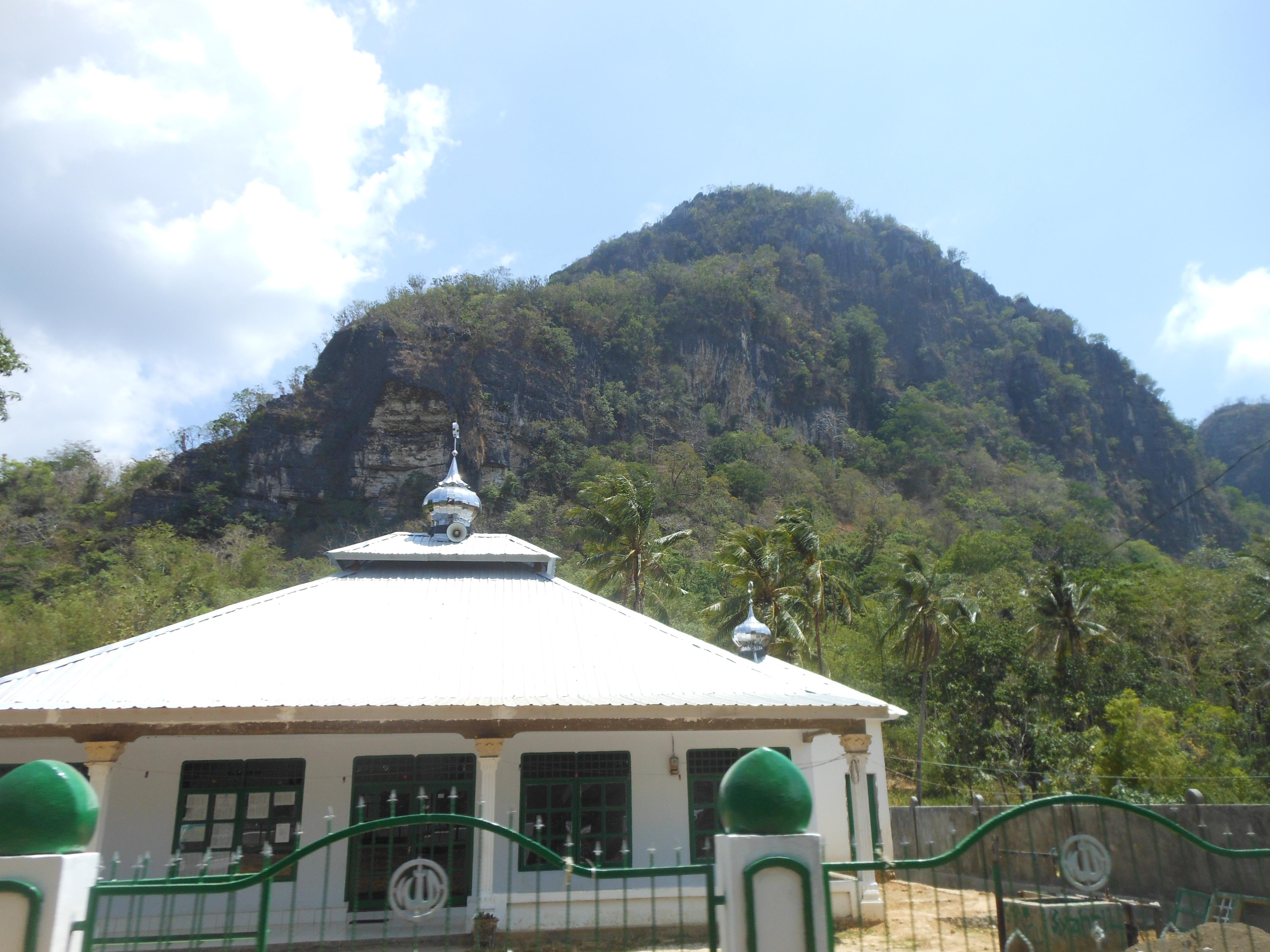 tondongkarambu-081