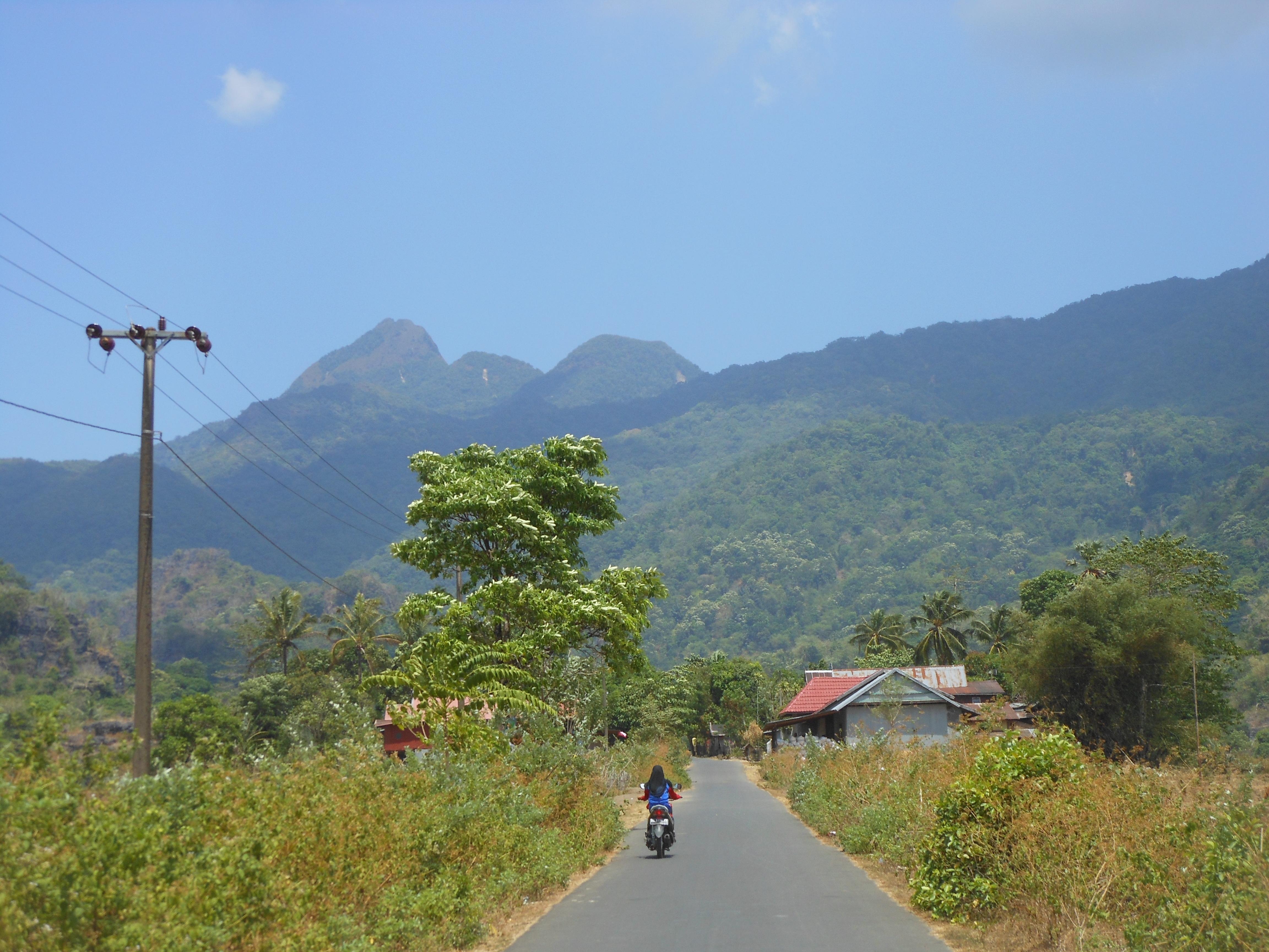 tondongkarambu-089