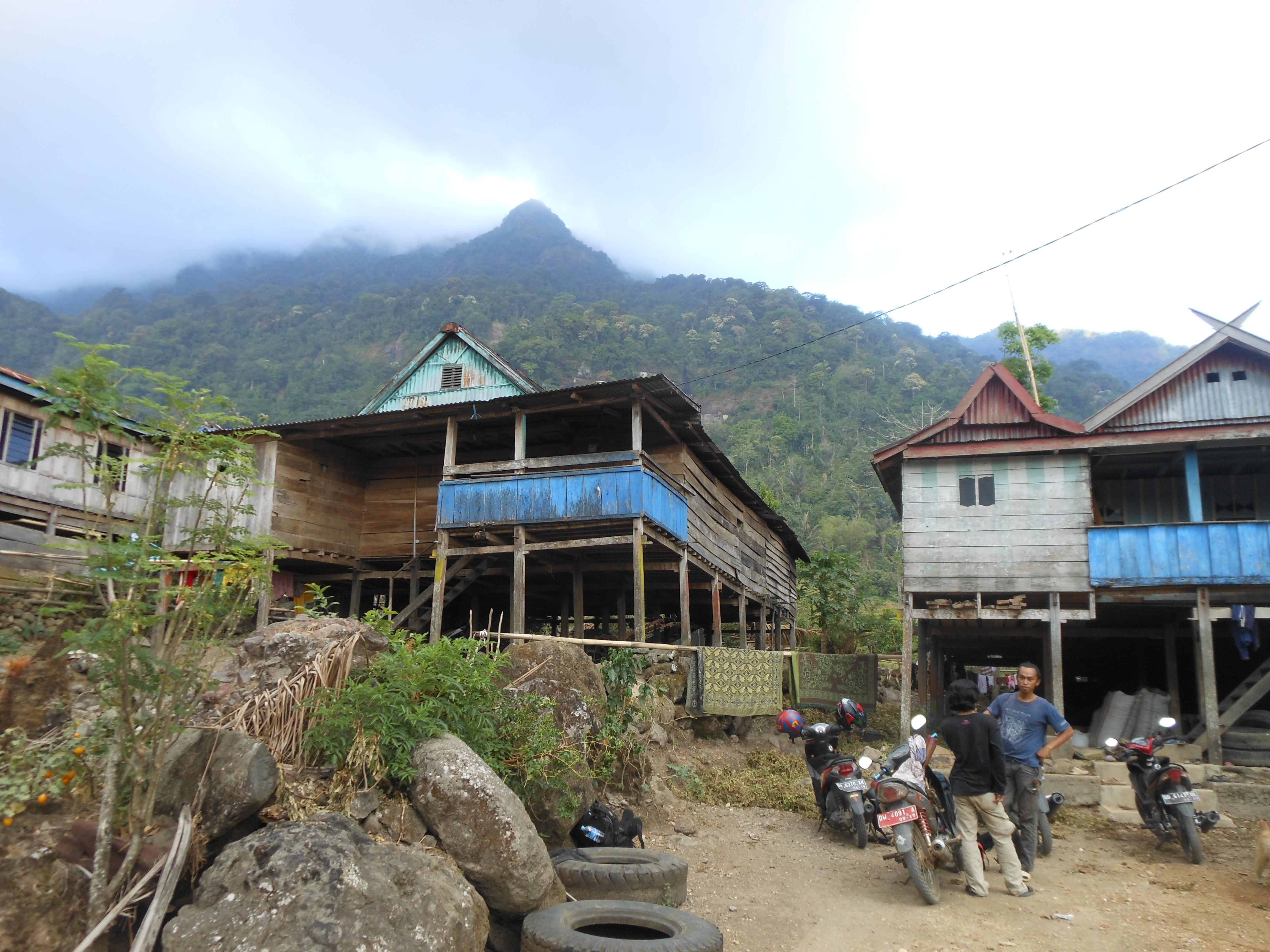 tondongkarambu-135
