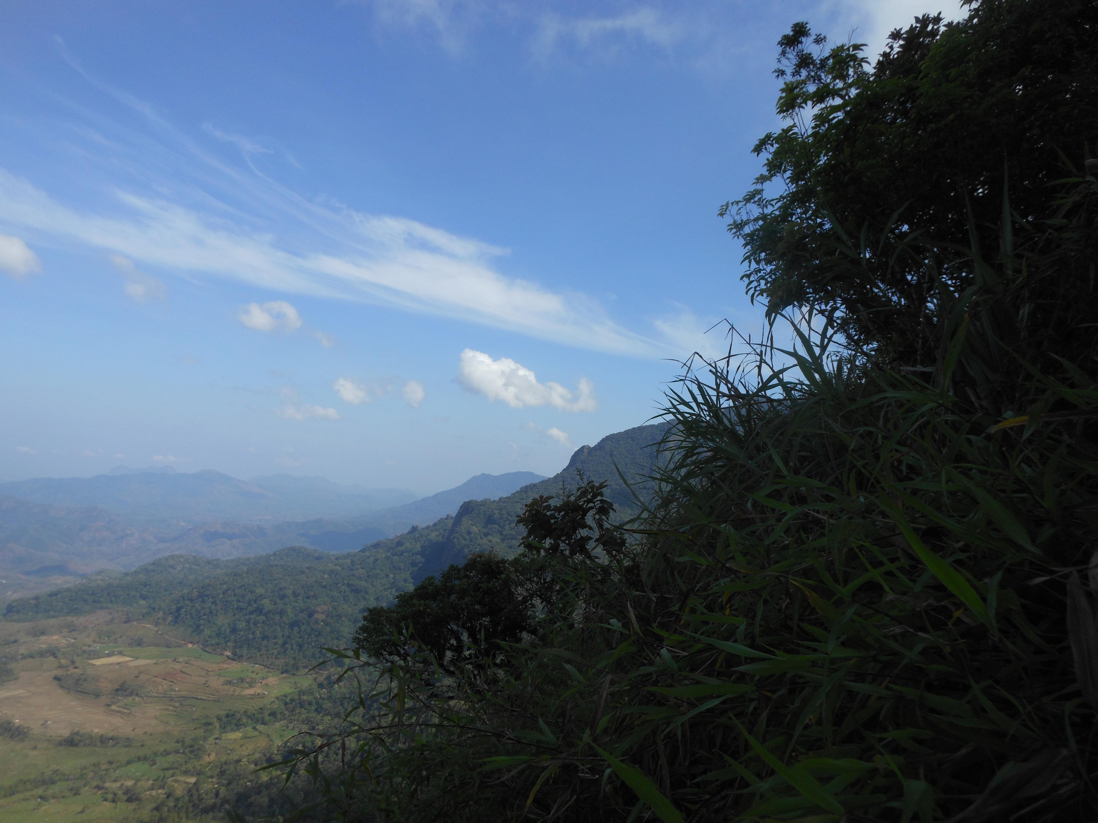 tondongkarambu 282