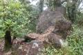 gunung wayang 156