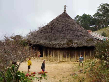 Traditonal Timorese house (Trevor Sharot, July 2018)