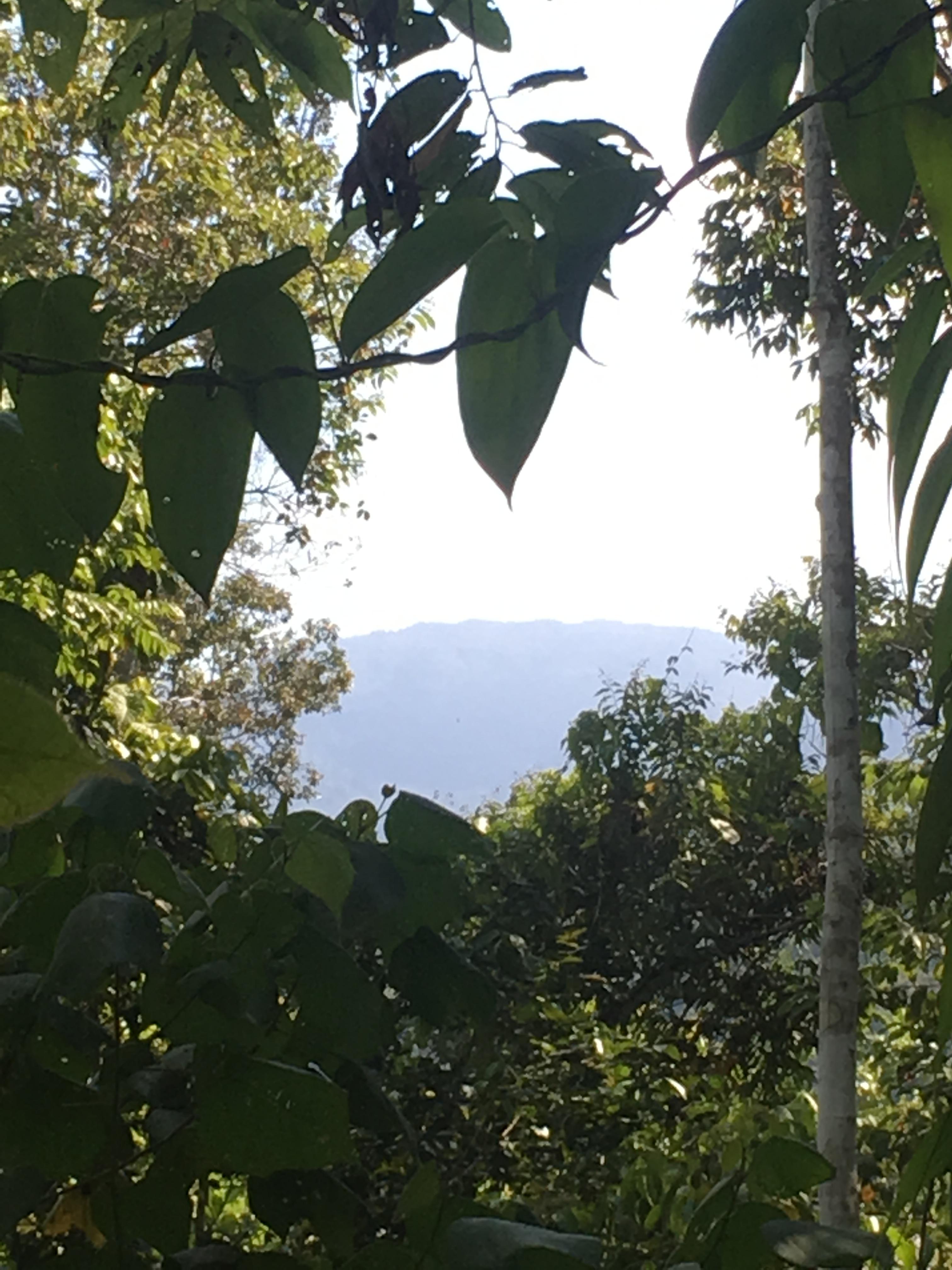 Gunung-Sabatai-the-high-point-on-a-range-Nick-Hughes-September-2019